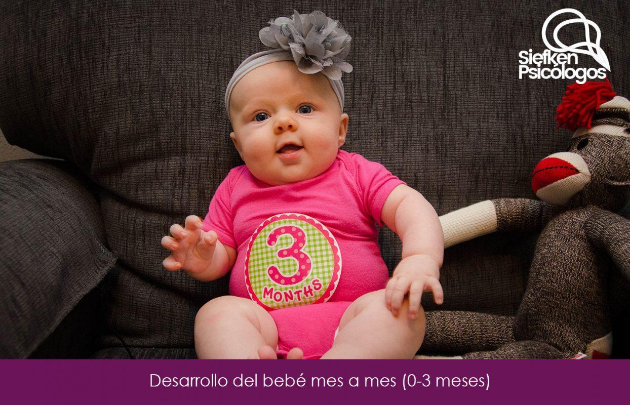 Desarrollo Del Bebe Mes A Mes 0 3 Meses Inteligencia Emocional